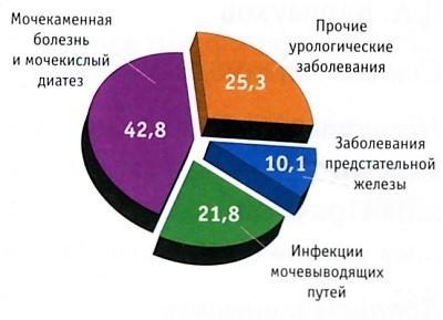 Статистика заболеваний мочевыделительной системы