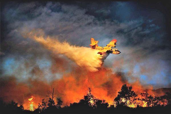 Технические средства борьбы с лесными пожарами