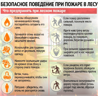 Алгоритм действий во время лесного пожара