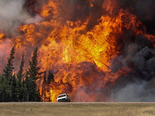 Ущерб от лесных пожаров