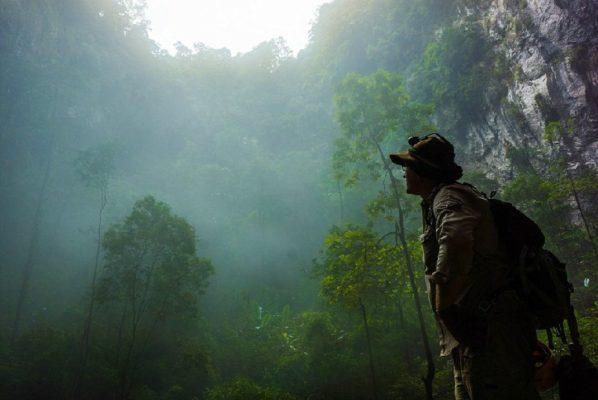 в лесах Коста-Рики