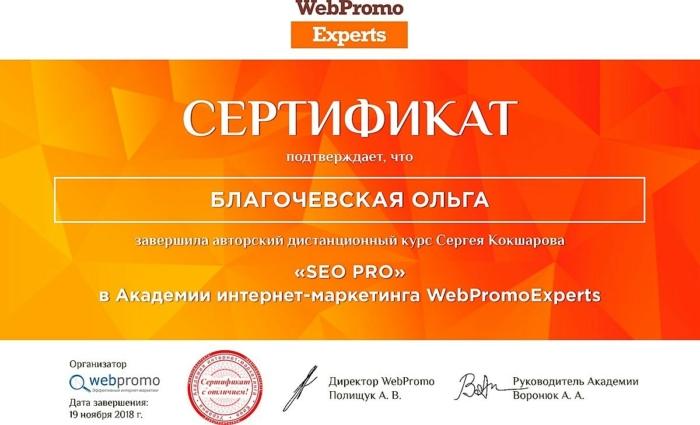 Сертификат WebPromoExperts