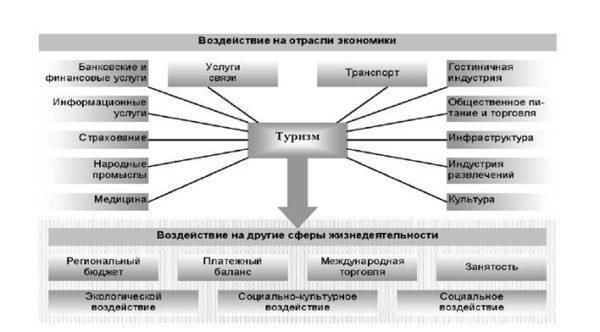 структура туризма