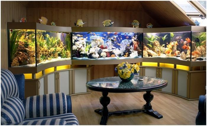 изготовление морских аквариумов на заказ