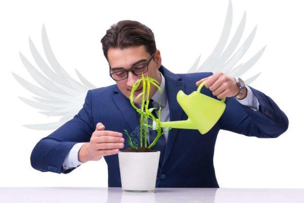 Как найти инвестора для бизнеса с нуля