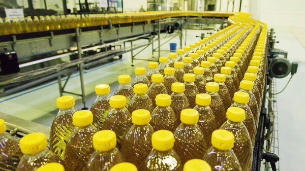 технология производства подсолнечного масла
