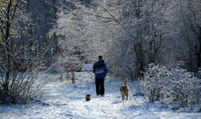 Жителям Москвы и Подмосковья рассказали о погоде на выходных